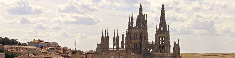 Curso Manipulador de Alimentos en Burgos