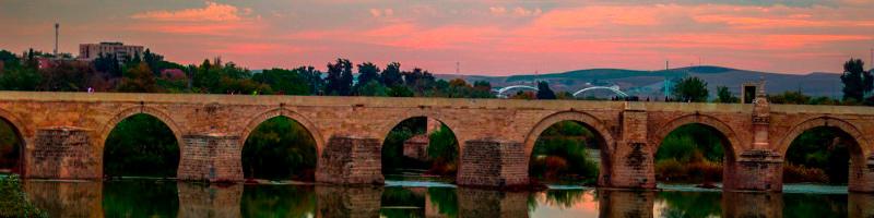 El Carnet de Manipulador de Alimentos en Córdoba