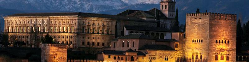 Tu Carnet de Manipulador de Alimentos en Granada