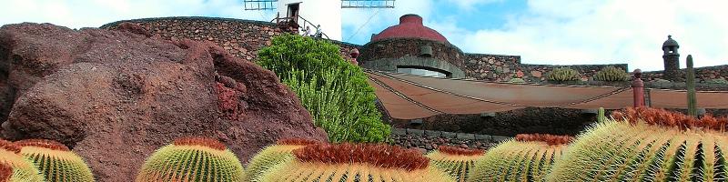 Tu Curso de Manipulador de Alimentos en Lanzarote