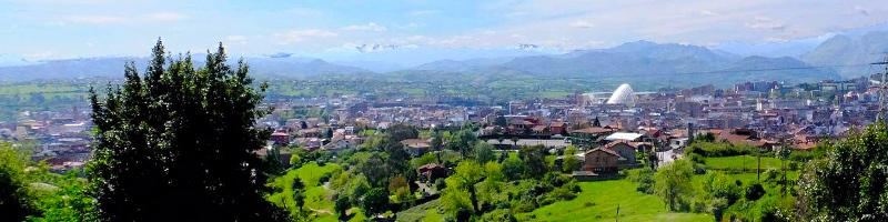 Tu Carnet de Manipulador de Alimentos en Oviedo